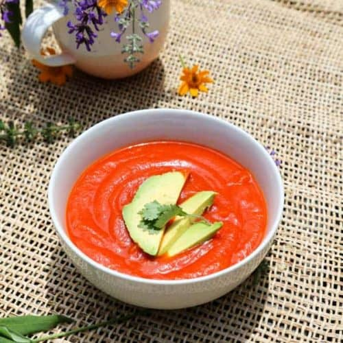 roasted red pepper ketchup in a bowl with avocado slices