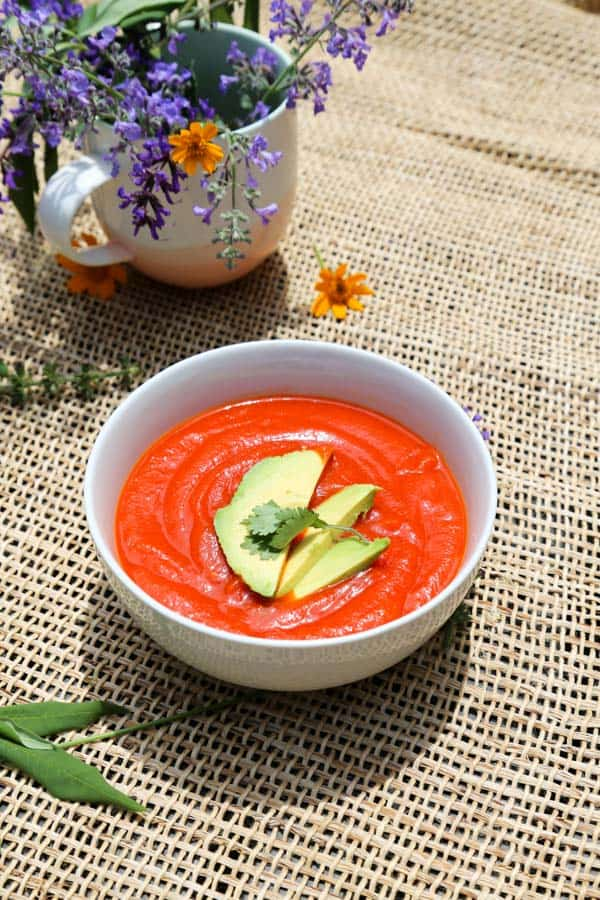 Roasted Pepper and Spaghetti Squash Ketchup in a bowl with avoado