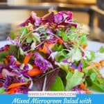Mixed Microgreen Salad with Chickpea Croutons