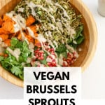 Brussels Sprouts Salad Vegan, Brussels Sprouts Salad Vegan and Gluten Free